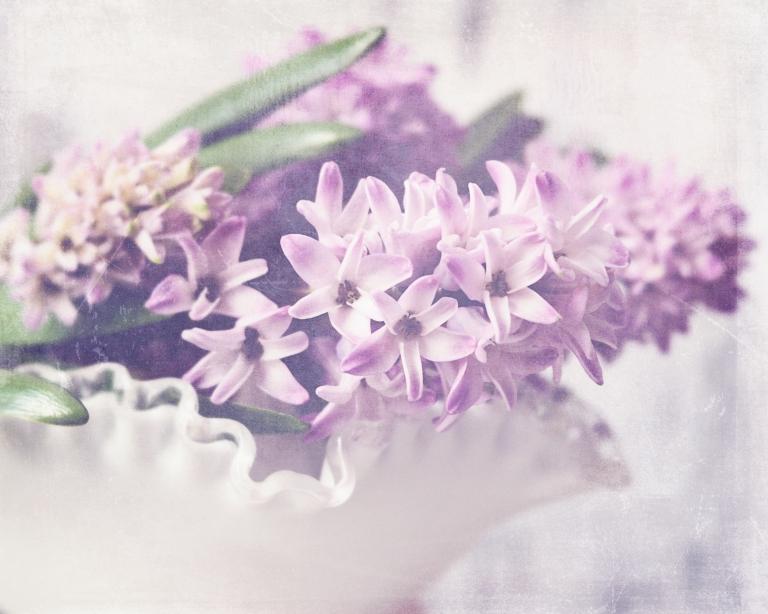 lb_crystal_hyacinth.whitebowl_epiphany