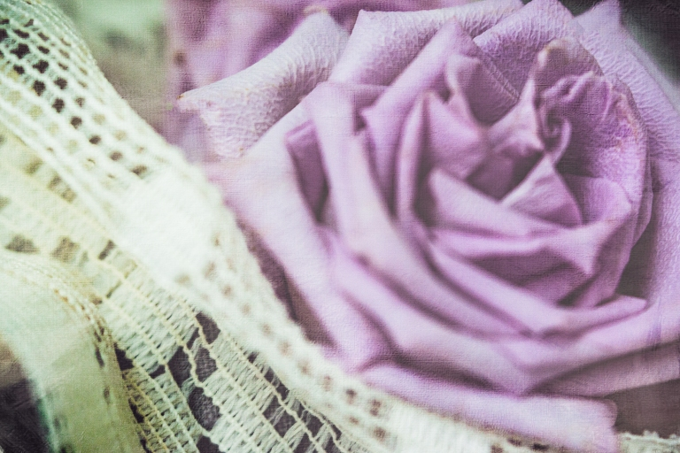 btl_purple.rose.macro_del.paints