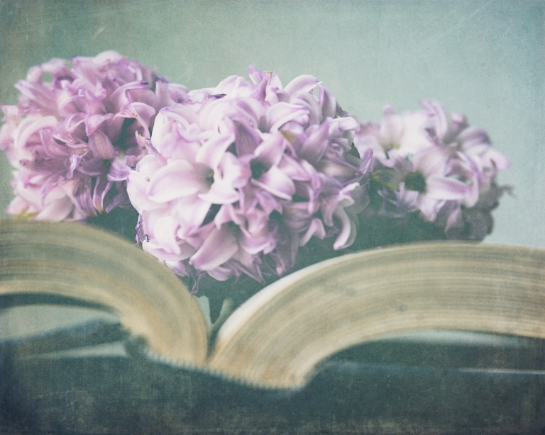 lb_crystal_hyacinth.on.books_burnished