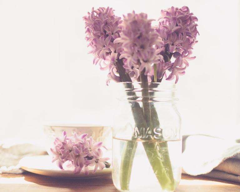 lb_crystal_hyacinth_window