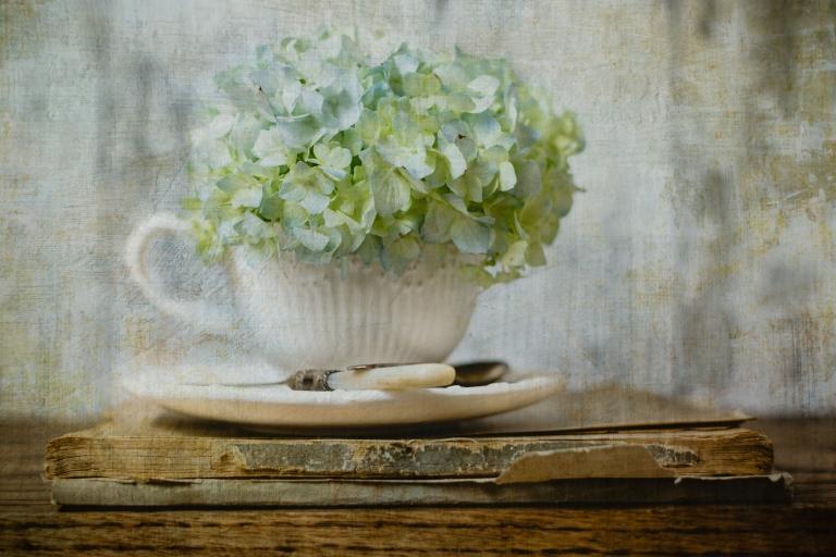 btl_crystal_hydrangea.teacup_todays